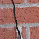 Complete Foundation Repair Solutions in Chicago