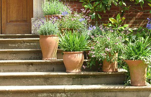 Stair and stoop problems and solutions in chicago il